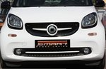 Front Grill insert SLS Smart Fortwo W453 S